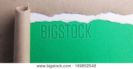 Rip green paper and white background