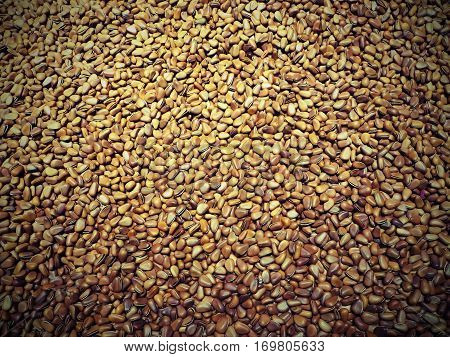 Pine nuts are the edible seeds of pines.
