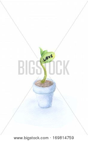 The growth of love - Fresh green sapling with word