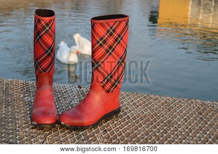 Rubber Boots By The River