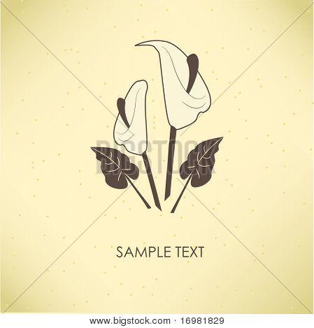 Jahrgang Grußkarte mit Calla Lily Flower. Vektor-Illustration.
