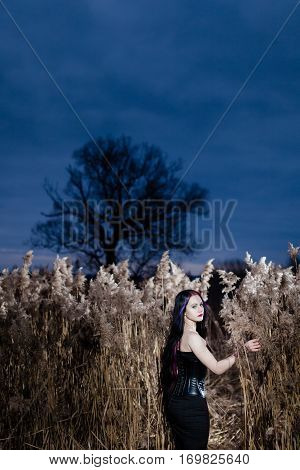 Portrait of the gothic woman in a high, dry grass at sunset