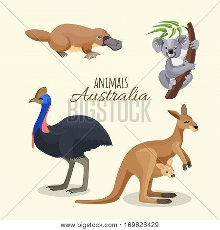 Australian animals collection of brown kangaroo with child in pocket on belt, grey koala on branch with leaves, duck-billed platypus and black ostrich. Vector poster of australian inhabitants
