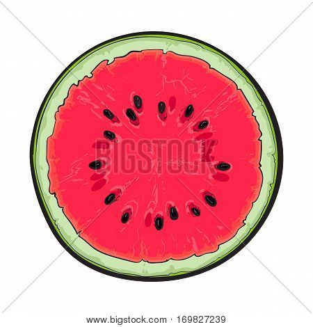 Half of ripe watermelon with black seeds, top view sketch style vector illustration isolated on white background. Realistic hand drawing of ripe watermelon cut in half