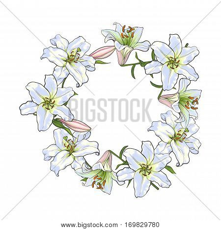 Round frame of white lily flowers, decoration element, sketch vector illustration isolated on white background. Hand drawn realistic white lily flowers as round frame