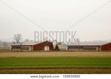 Agricultural Establishments In The Fields