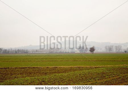 Empty Winter Fields With Hills On The Back