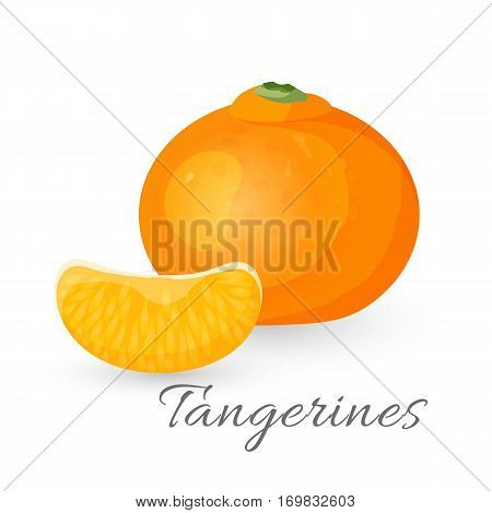 Tangerine tropical fruit isolated on white. Mandarin orange realistic vector illustration. Tasty ripe citrus tangerine isolated on white.