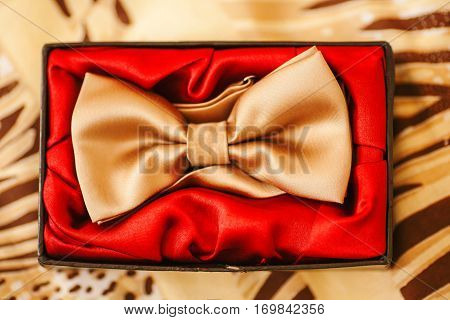 Men new bow-tie in box with red textile. Golden silk satin fashionable accessory for man. Present for male, stylish element of cloth