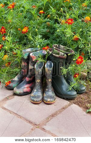 Rubber Boots (Male Children Female) Near Flowers Marigold In Garden. Top View And Copyspace.