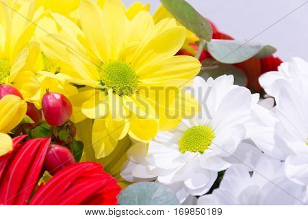 A Beautiful Bouquet Of Multicolored Flowers