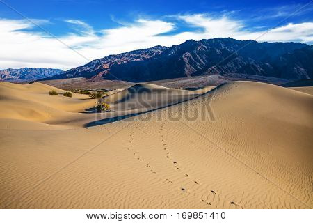 Mesquite Flat Sand Dunes. Hot autumn in Death Valley, California. Windy and hot morning in the desert