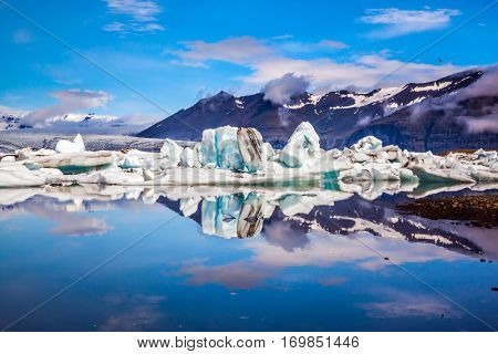 Icebergs and ice floes are reflected in the smooth water surface.  Drift ice Ice Lagoon - Jokulsarlon. Morning in the Iceland. The concept of extreme northern tourism