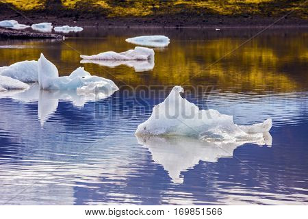 Drift ice Ice Lagoon - Jokulsarlon. Morning in the Ice Lagoon, Iceland. Icebergs and ice floes are reflected in the smooth water surface. The concept of extreme northern tourism