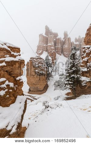 Winter snow falling on hoodoos at Bryce Canyon National Park in Southern Utah.