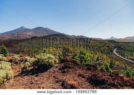 Overlook on National park El Teide Tenerife island Spain