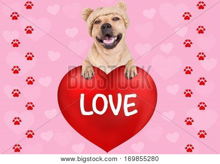 lovely cute dog hanging with paws on big valentine's day heart with text Love on pink background with hearts and foot print