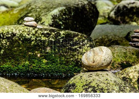 Stone shaped eggs on the riverbank in Sumava