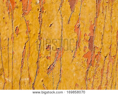 The Texture Of The Old Board Close Up