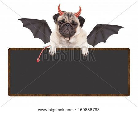 devilish cute pug puppy dog dressed up as devil for Halloween, holding blank sign, isolated on white background