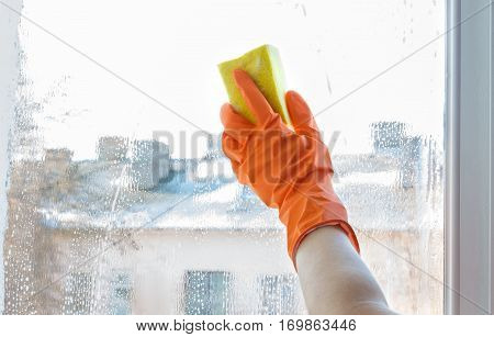 Hand In Rubber Glove Washes A Window.