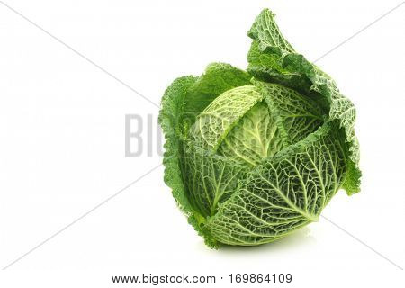 a green cabbage on a white background