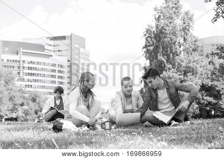 College friends studying while using laptop at campus