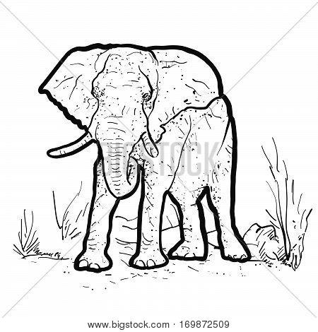 Elephant Outline Illustration Hand-drawn Vector Outline Sketch