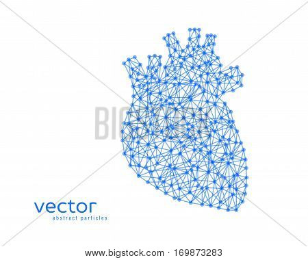 Abstract vector illustration of human heart on white background.