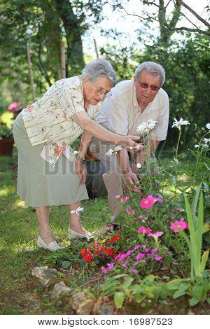 elderly couple in garden