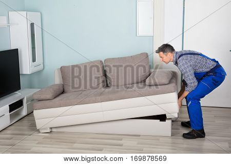 Male Mover Placing Sofa On Hardwood Floor In Living Room At Home