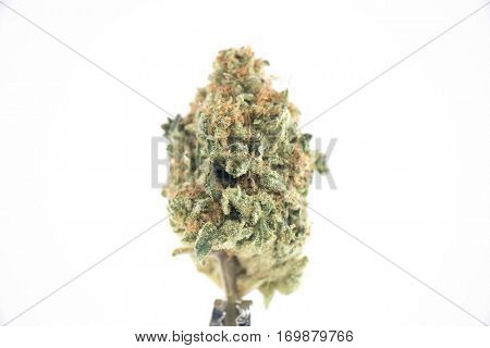 Single cannabis bud (ob reaper strain) isolated on white - Medical marijuana background