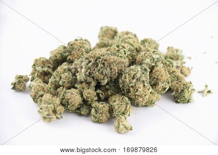 Detail of cannabis buds (mango puff strain) isolated on white - medical marijuana concept