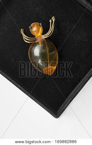 Amber spider brooch in black jewel box closeup