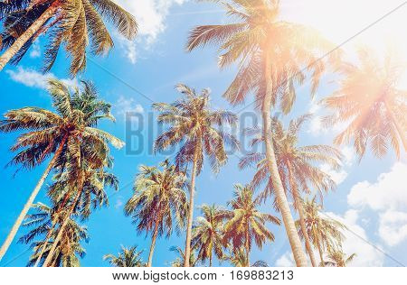 Beautiful tropical sunset with palm trees at beach. Vacation concept