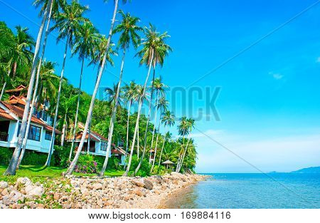 Beautiful tropical resort. View of nice tropical beach with palms around. Holiday and vacation concept