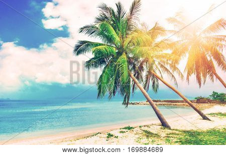 Beautiful beach. Hammock between two palm trees on the beach. Holiday and vacation concept. Tropical beach. Beautiful tropical island in Thailand.