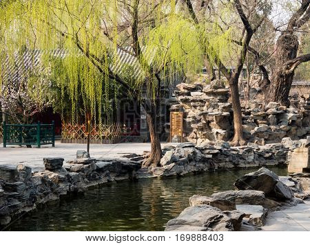 Beijing, China - March 26, 2015: Classical Chinese garden of Prince Gong palace of Beijing in springtime
