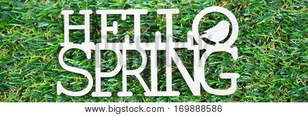 Spring as text written on a meadow symbolic for spring onset