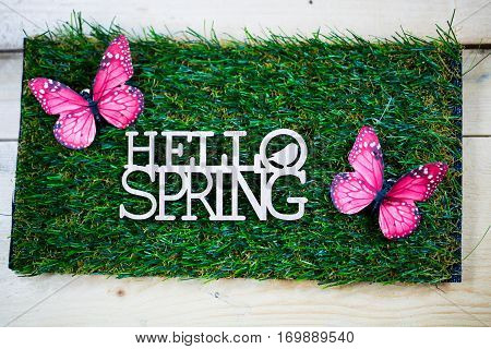 Spring as text written on a meadow with butterfly symbolic for spring onset