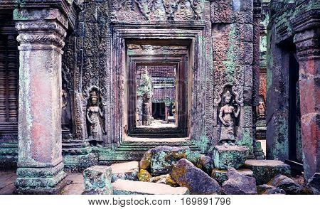 Classical picture of Ta Prohm Temple, Cambodia