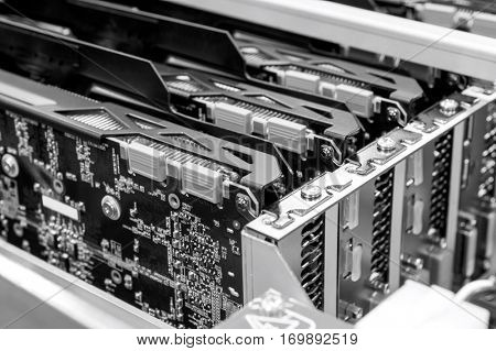 Close-up of video cards in electronics industry