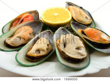 Mussels On Dish