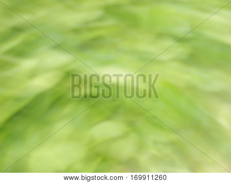 Natural abstract background modified from green plants