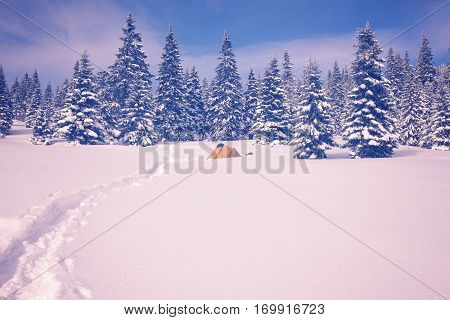 Tent Are In Winter Mountains, Standing In The Snow