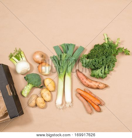 Square Image Of Small Assortment Of Fresh Vegetables