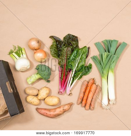 Square Image Of A Small Collection Of Fresh Vegetables
