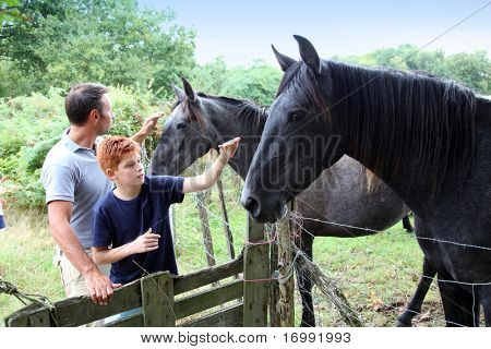 poster of Parents and children petting horses in countryside