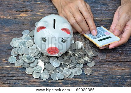 piggy bank and stack coins for saving money and success tax season