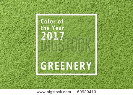 Trendy color concept. Text COLOR OF THE YEAR 2017 GREENERY on texture background